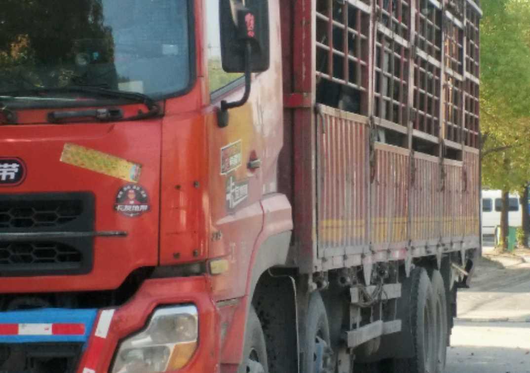 东风天龙 载货车  315匹 2010年02月 8x4