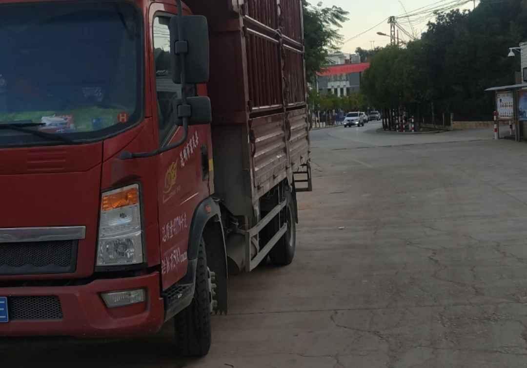 中國重汽HOWO 載貨車  170匹 2019年07月 4x2