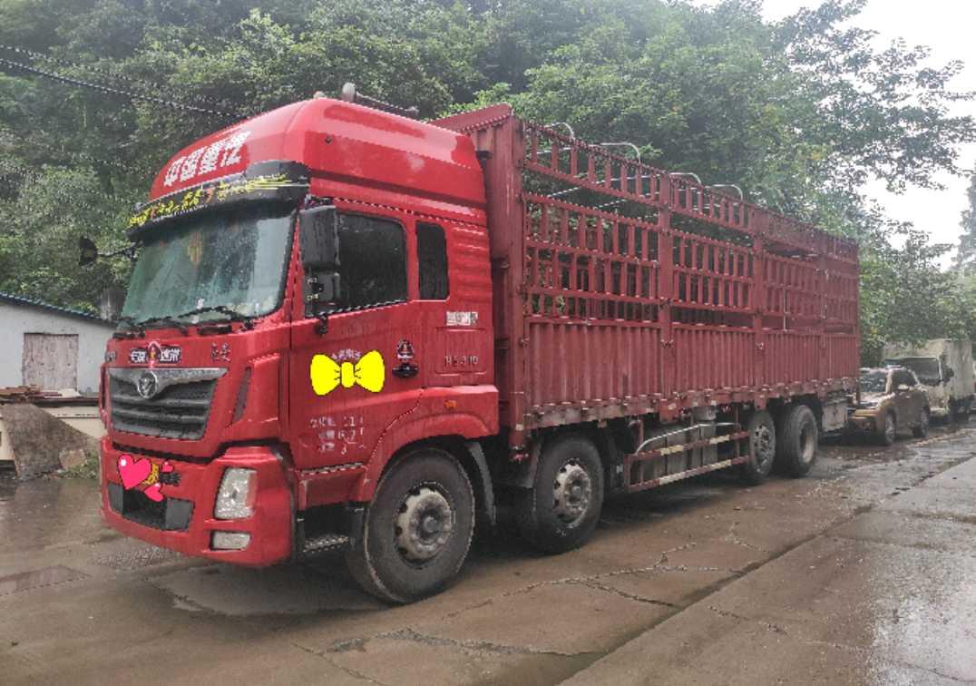 中國重汽豪曼 載貨車  310匹 2018年03月 8x2