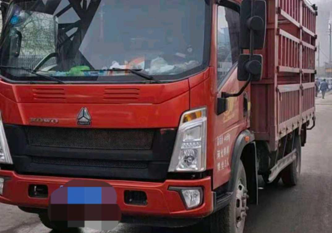 中国重汽HOWO 载货车  175匹 2019年02月 4x2