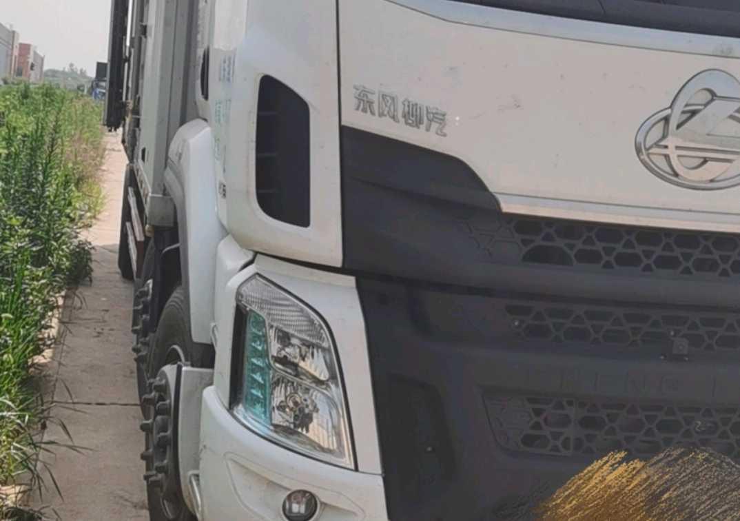 东风柳汽乘龙H5 舒适版 载货车  290匹 2020年06月 8x2