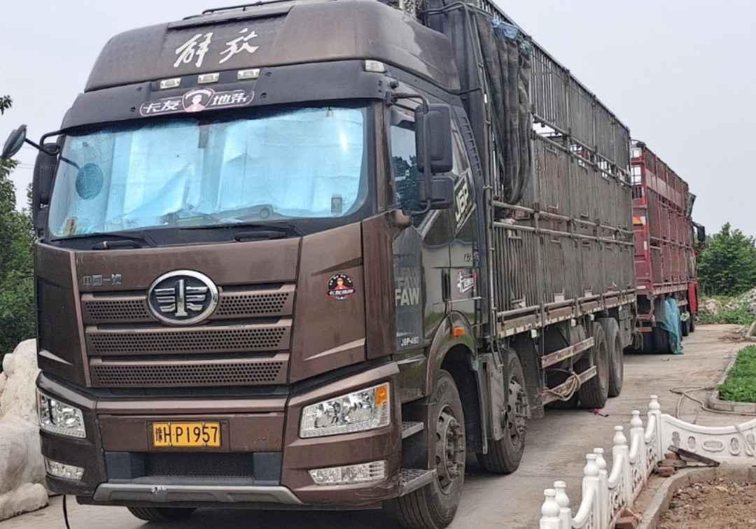 一汽解放J6P重卡 质惠版 载货车  460匹 2018年09月 8x4