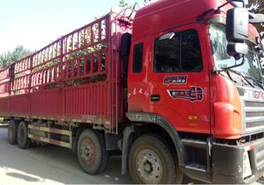 江淮格尔发K3X重卡 载货车  310匹 2016年02月 8x4