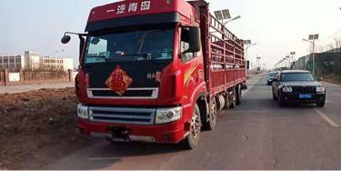 青島解放途V 載貨車  240匹 2013年09月 8x2