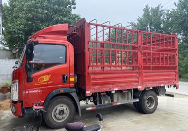 中国重汽HOWO 载货车  160匹 2020年11月 6x6