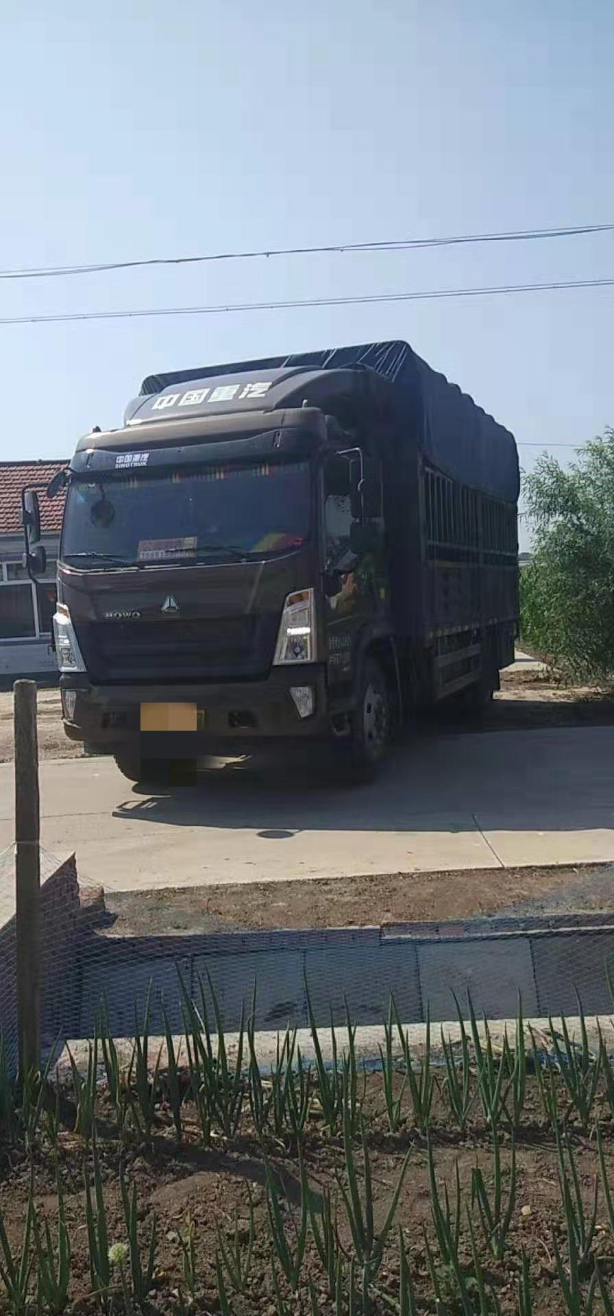 中國重汽HOWO 載貨車  176匹 2019年04月 4x2