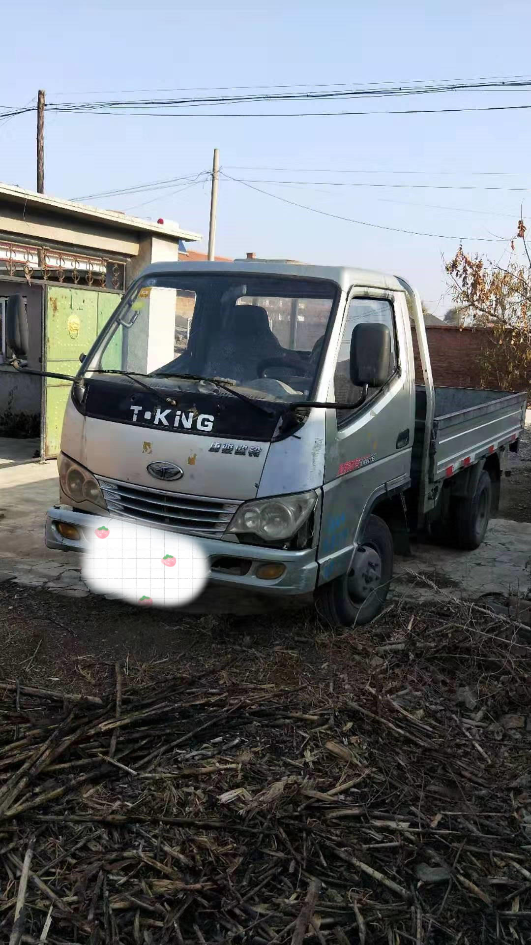 唐駿汽車唐駿EV 載貨車  68匹 2009年10月 4x2